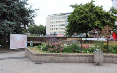 AG Begrünung Ebertplatz