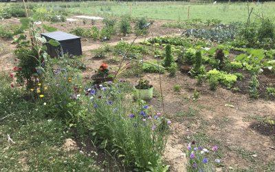 Gartenlabore